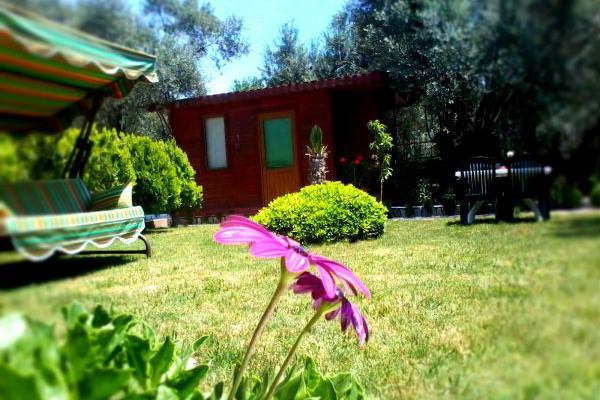 Orchidee Bungalow Butik Otel