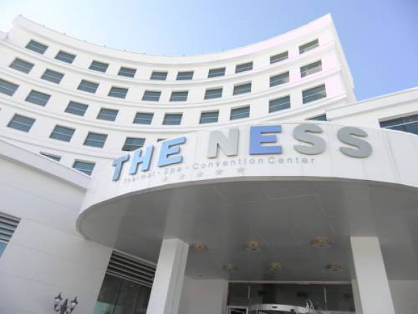 Theness Hotel Termal & Spa